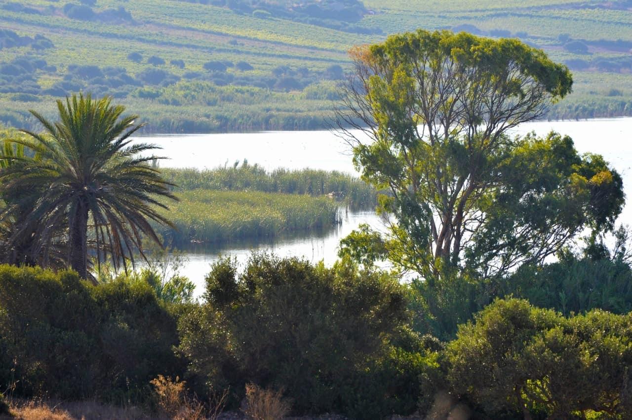 Gorghi Tondi oasis