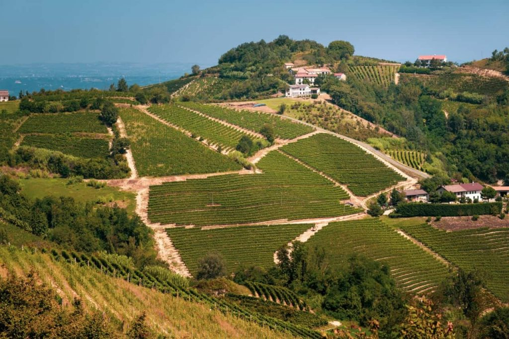 Monferrato Nizza
