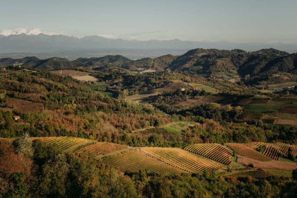 Albugnano's landscape